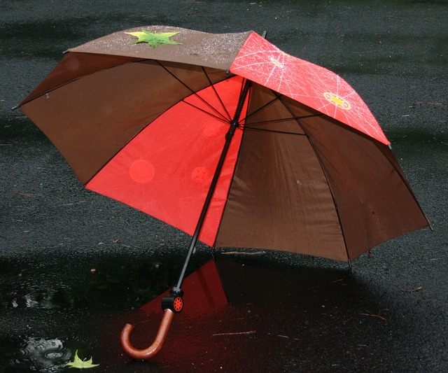 hpso insurance policy umbrella