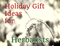 holiday gift ideas for herbalists - wintertime grass photo