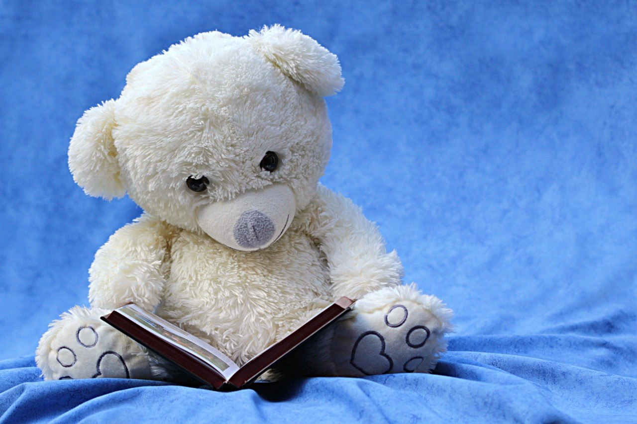 white teddy bear reading a book