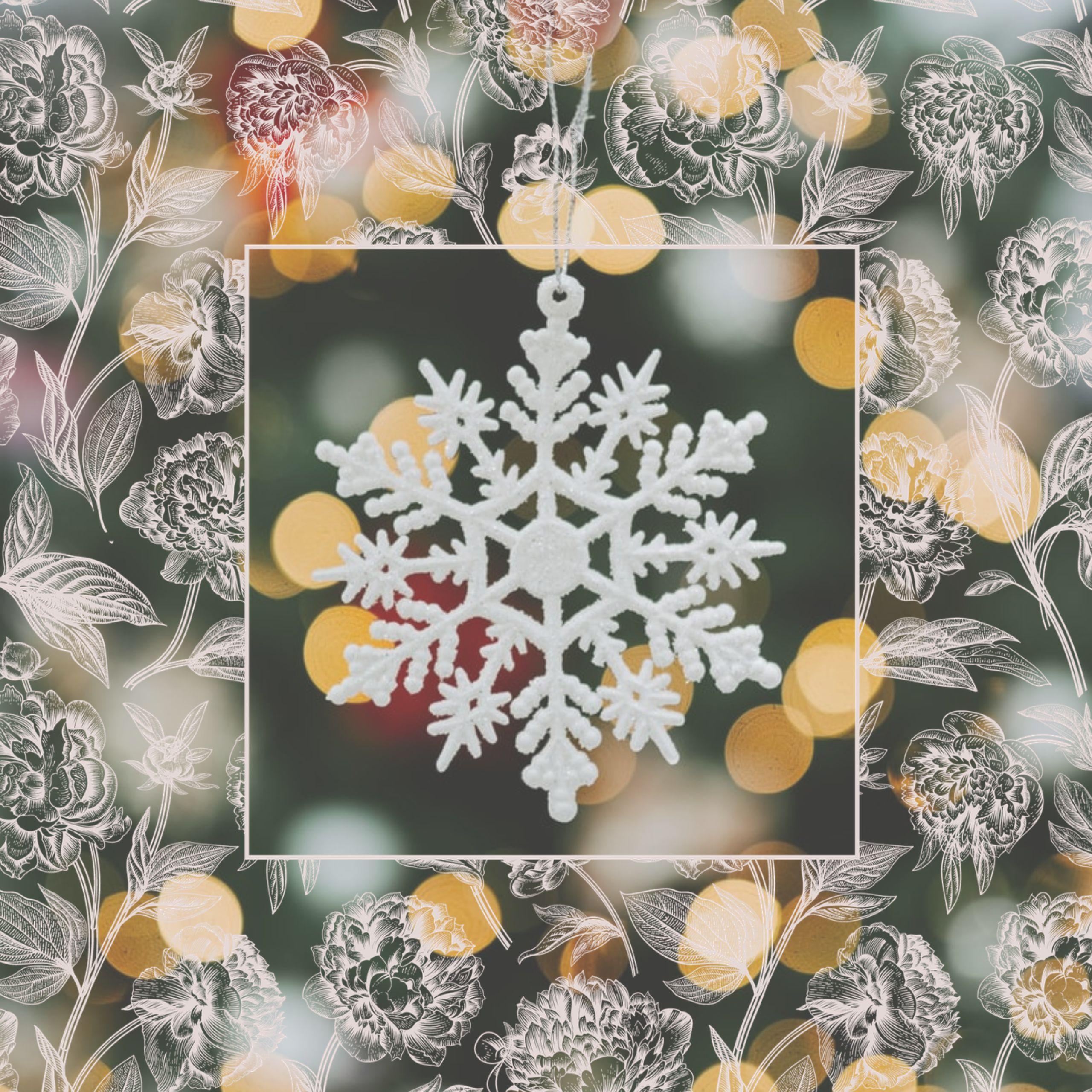 Winter Dreaming Webinar